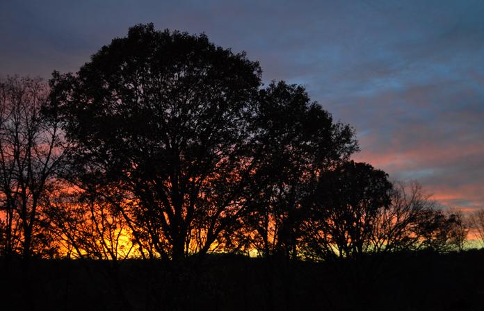 sunset darkened 11-2-15 for web