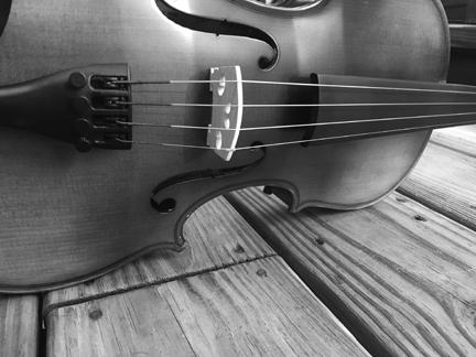Violin BW 2 for web