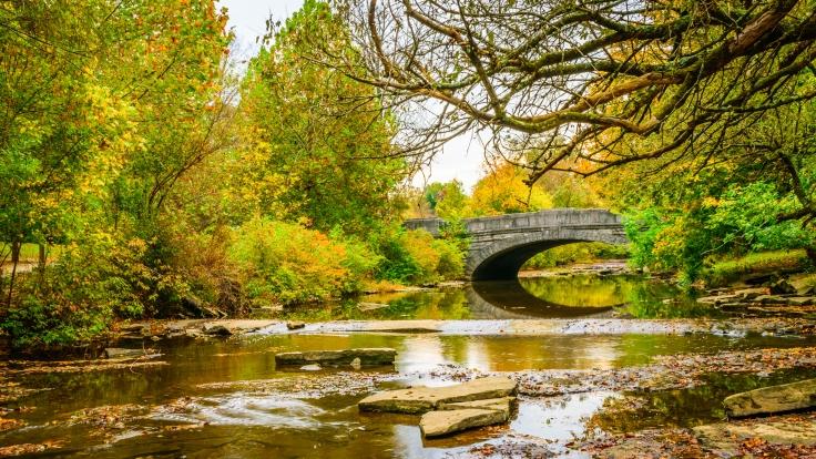 Stone Bridge in a park setting
