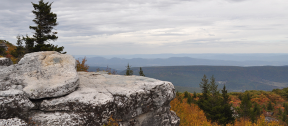 Dolly Sods 1 (small)